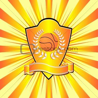 Basketball shield