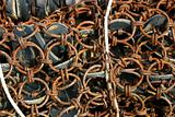 Rusty Net