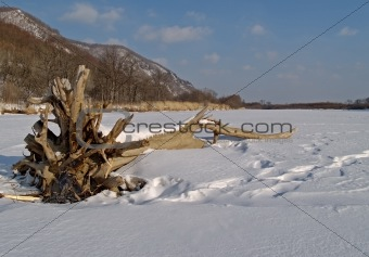 On river in winter,