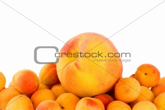 One peach over the pile of apricots