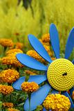 Colorful fans in yellow garden