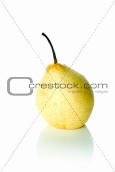 Single yellow china pear