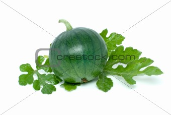 Small watermelon