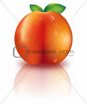 Beautiful fresh peach