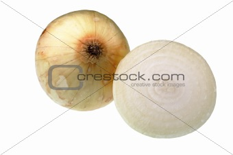 Onion with cross section