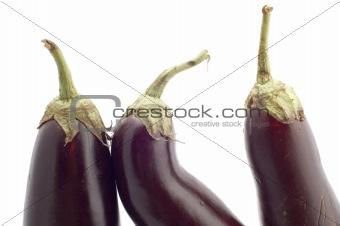 aubergine close up