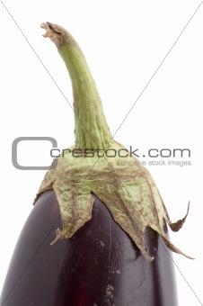 aubergine closeup