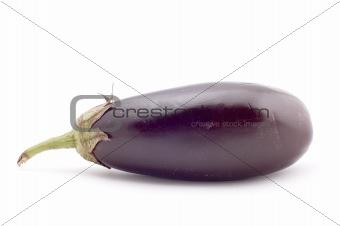 aubergine macro