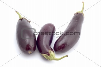 aubergine on white