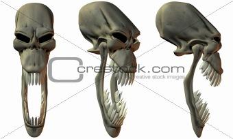 3D Fantasy Skulls