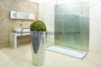 Bathroom big shower