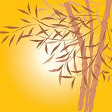 Bamboo background, vector