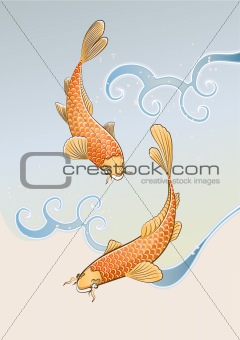 two koi carps