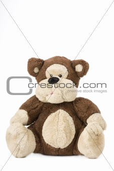 classsical teddy bear sitting on a white background