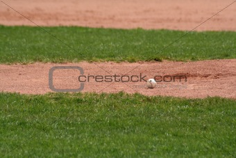 Sitting Baseball