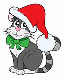 Cat in Christmas cap vector illustration