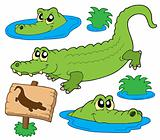 Crocodile collection