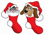 Cute cat and dog in Christmas socks vector illustration
