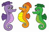 Cute sea horses vector illustration