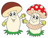 Mushroom and toadstool vector illustration