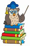 Owl teacher and books