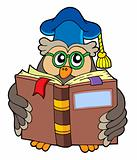 Owl teacher reading book