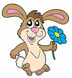 Smiling rabbit with flower vector illustration