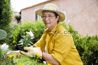 gardening