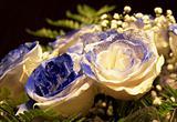 Rose buequet