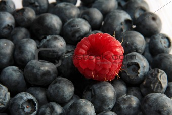 single raspberry on black currant