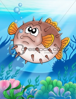 Balloonfish with bubbles