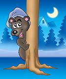 Bear on tree