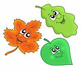 Cute autumn leaves