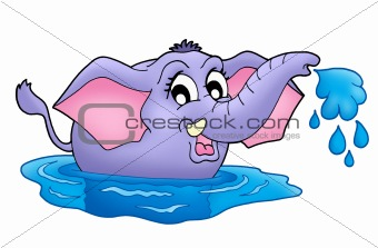 Small elephant in water