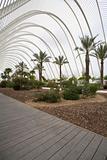 L Umbracle Garden