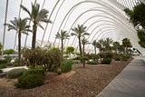 L Umbracle Garden 