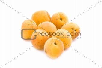 apricot on white
