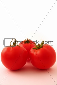Three tomatoes on white