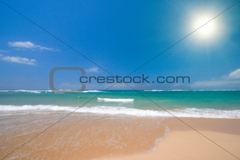 Beautiful beach in summer