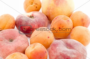 apricot and peach closeup