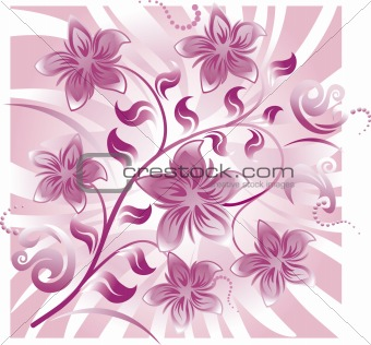 Floral Abstract