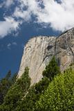 El Capitan - Yosemite