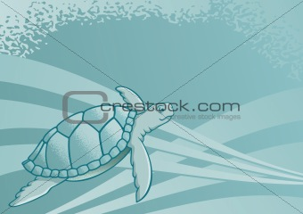 Sea turtle background