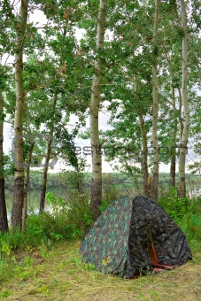On shore near the trees installed tent
