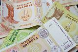 Moldovan money