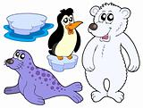 Ice animals collection