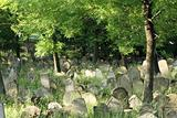 old jewish burial place