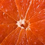 Grapefruit close up