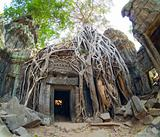 doorway at Ta Prohm Temple, Cambodia