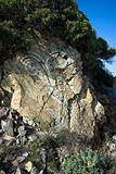 Rock Face Graffiti